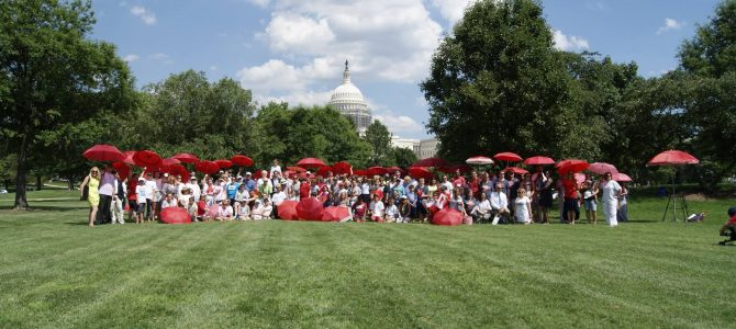 Dyslexia Hill Days-Washington D.C.